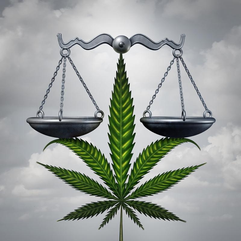 Cannabiskontrollgesetz
